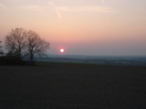 thüringer Sonne