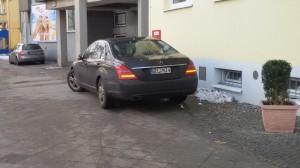 Parkdödel