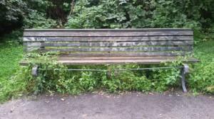 kein Sitzkiesel